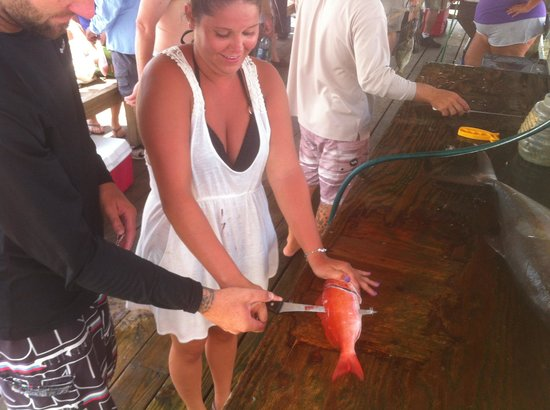 Majesty Deep Sea Fishing at Monty's Marina: Talk about full service....haha