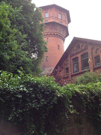 Parkhotel Altes Kaffeehaus: Виды парка