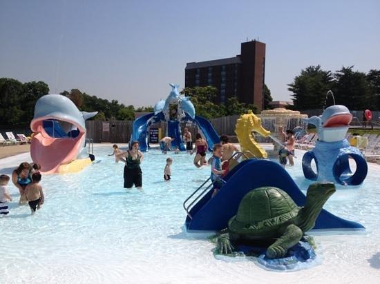 Atlantis Waterpark: Kiddie play area.
