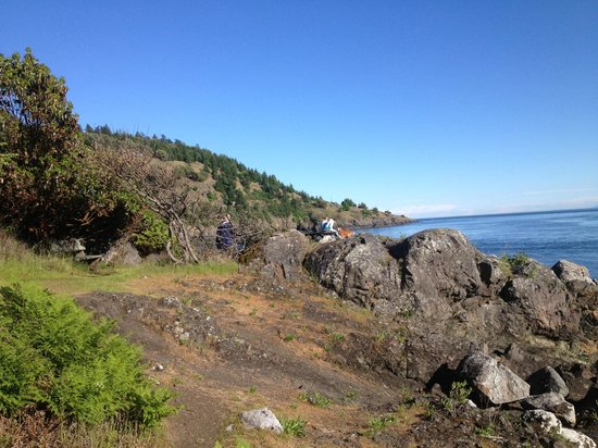 Lime Kiln Point State Park : View at Lime Kiln