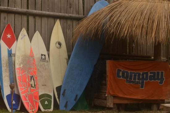 Compay Hostel : tablas de surf
