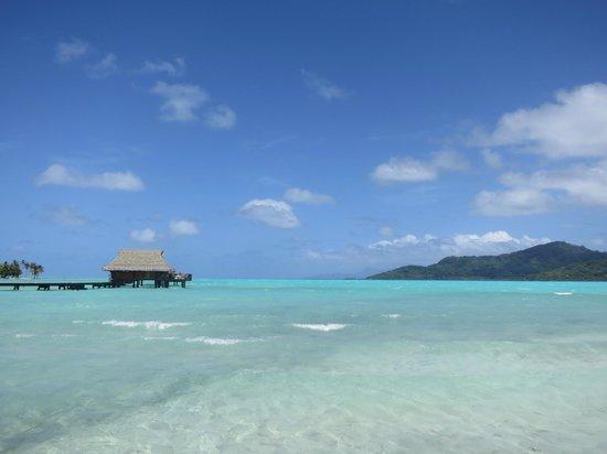 Vahine Island Resort: Views