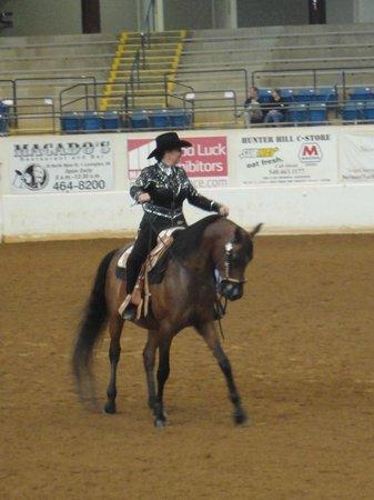 Virginia Horse Center: Pleasure Western 1