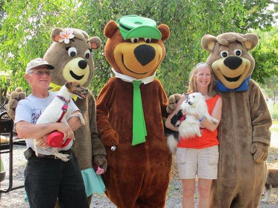 Yogi Bear's Jellystone Park Camp-Resort Hagerstown: Yogi & Guests