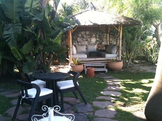 Hotel Ocean Vagabond Essaouira: dans le jardin