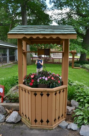 Genial Wisconsin Rapids Municipal Zoo: The Wishing Well At The Faerie Garden