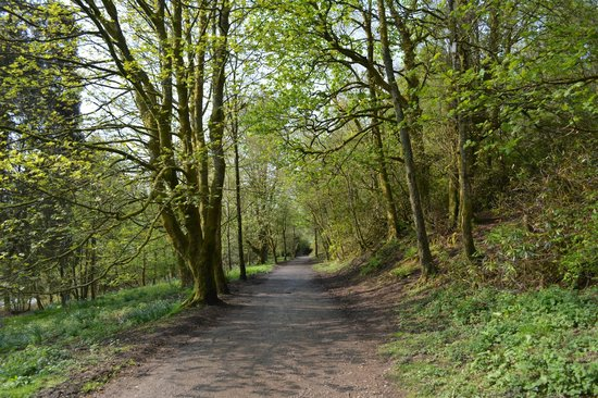 Mugdock Country Park: Walking through the park toward the castle