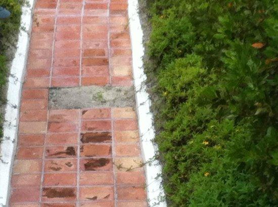 Cap Juluca: Missing tiles throughout the resort's walkways.