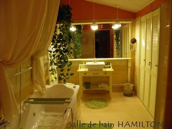 Au 10 d'Aygu - Chambres d'hôtes en ville : Salle de bain Hamilton