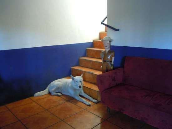 Costa Rica Airport Lodge: Staircase