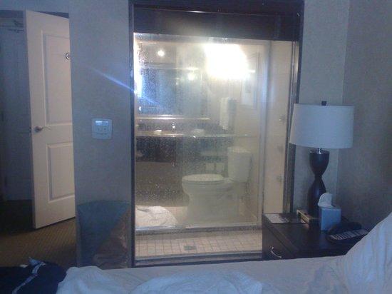 Hilton Garden Inn Toronto Downtown: bathroom view from room