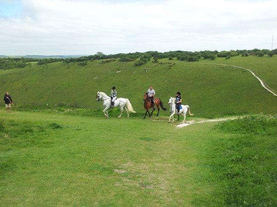 Devil's Dyke: horses at devils dyke