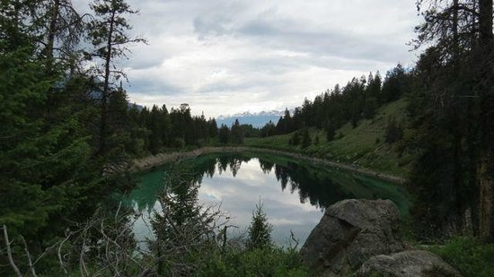 Walks & Talks Jasper : Great guided hike at Valley of the 5 Lakes in Jasper Canada