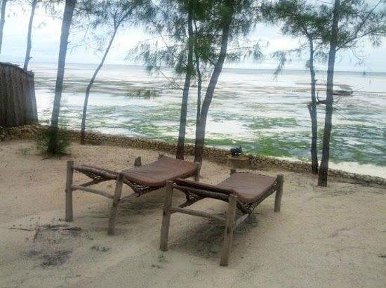 Seasons Lodge Zanzibar: private garden