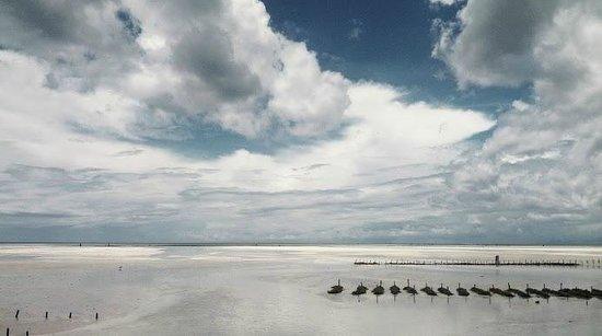 Seasons Lodge Zanzibar: low tide