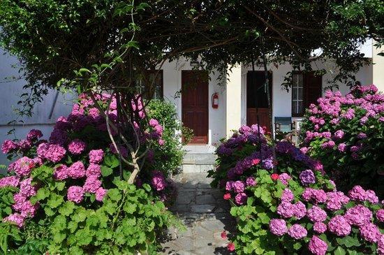 Villa Angela 사진