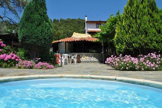 Villa Angela: Pool and bar