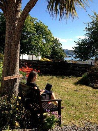 Plockton Gallery - The Manse: Miriam's romantic wifi spot in the garden