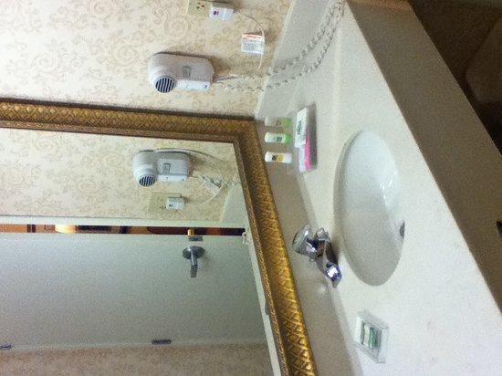 Country Inn & Suites By Carlson, Big Rapids : Bathroom