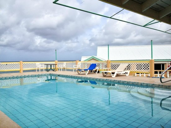 Bird Rock Beach Hotel: Hotel Pool