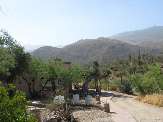 Tanque Verde Ranch: View from front porch of casita