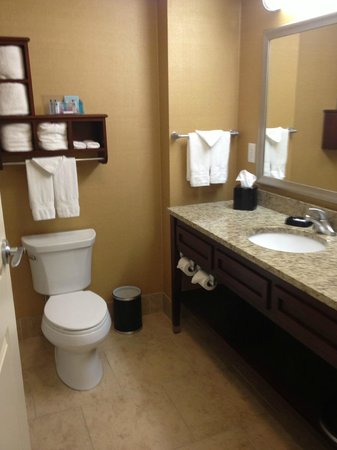 Hampton Inn & Suites Tifton : Shower only bathroom