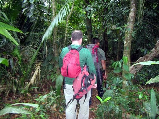 Ian Anderson's Caves Branch Jungle Lodge : Jungle Hike to Reach the Waterfall Cave Expedition