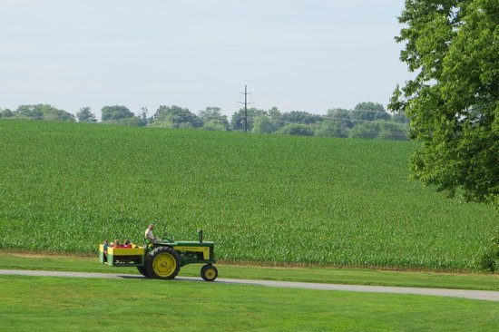Rocky Acre Farm B&B: Tractor Ride