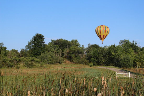 Equniox Balloons: Flying in Argyle, NY