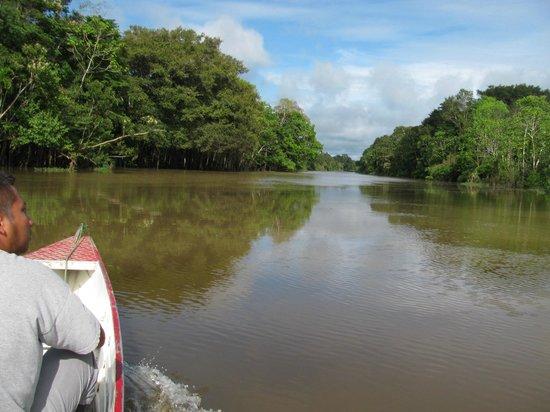 Otorongo Amazon River Lodge: Osmar taking us out to explore