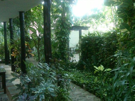 Hotel el Moro: Posado el Moro lush green courtyard Pto Morelos