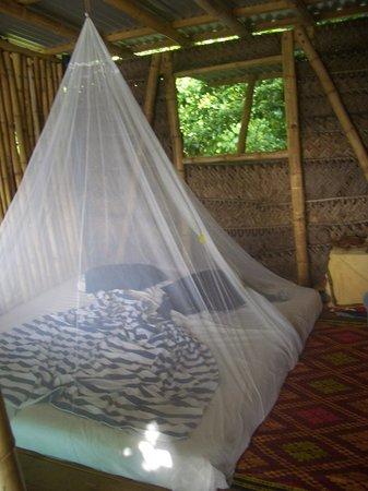 Mafana Island Beach Backpackers : Our Room
