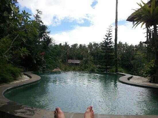 Graha Moding Villas: The infinity pool