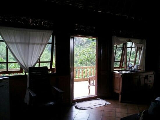 Graha Moding Villas: View from inside the villa