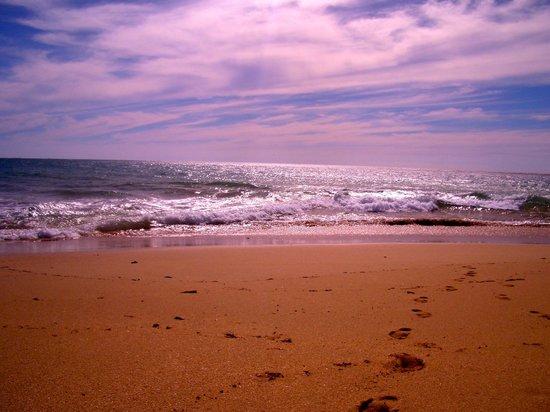 Taiana's Resort: The amazing beach