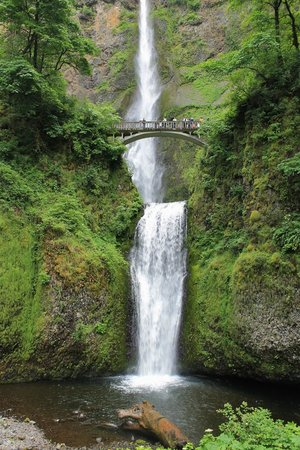 Columbia River Highway: Multnomah Falls a great place for lunch