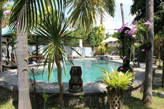 Villas Oasis: swimming pool