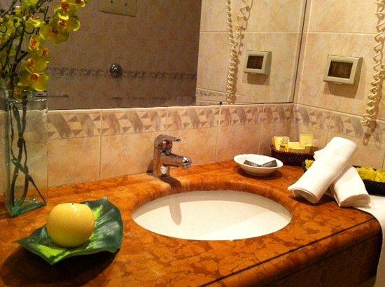 Massimo Plaza Hotel: bagno