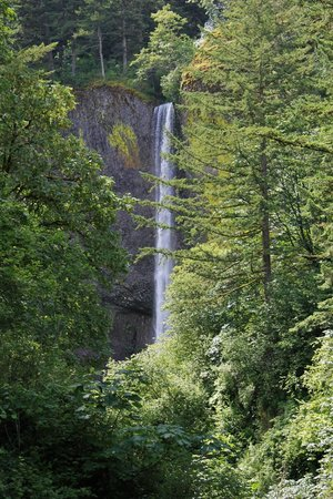 Latourell Falls: View from the top of the path
