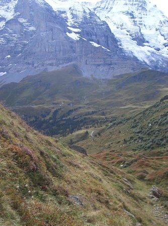 Grindelwald, Swiss: vom Männlichen Richtung Arvenwald