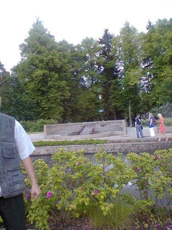 Hostel Mansikkala: Рядом парк