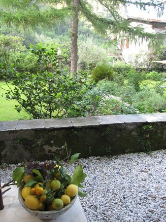 Lemons Guesthouse: Outside the Guesthouse