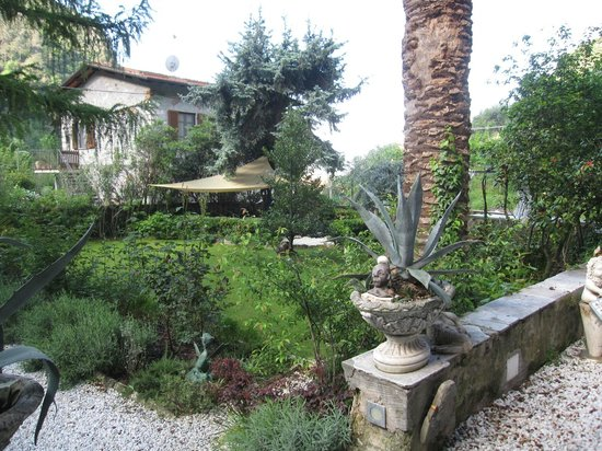 Lemons Guesthouse: Garden view
