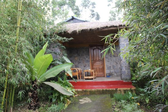 Le Bambou Gorilla Lodge: Individual room/cottage