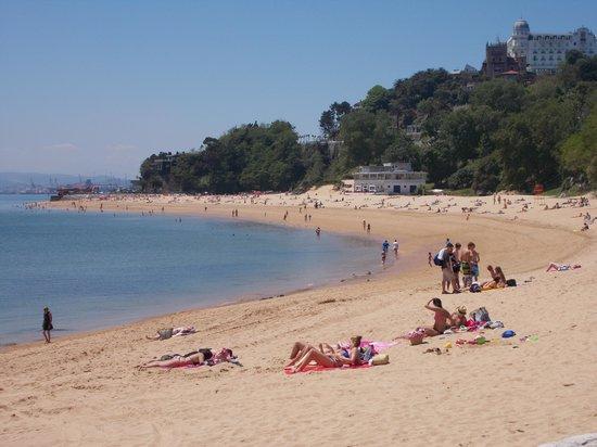 Hotel Bahia Santander : One of many wonderful beaches