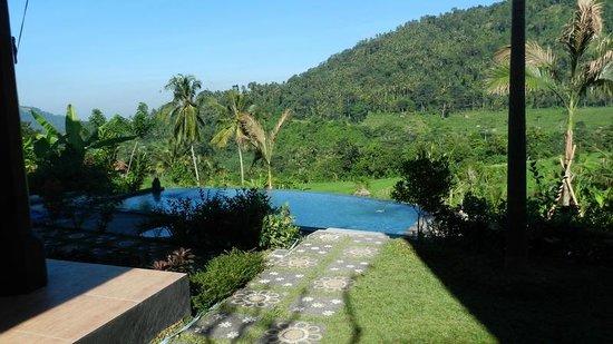 Arta Nadi Villa: La piscine et la vue de l'hôtel