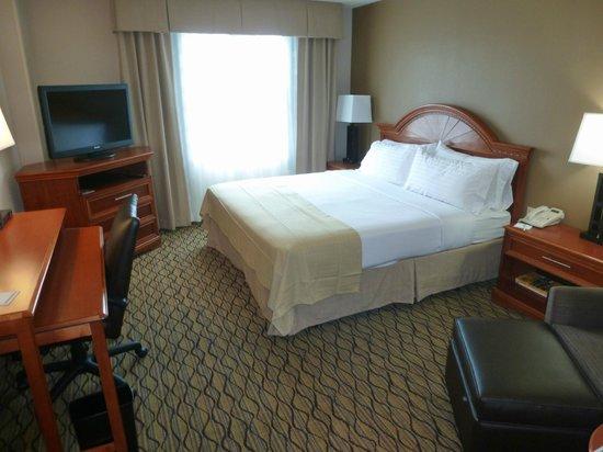 Holiday Inn Atlanta Airport South: chambre standard