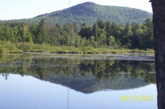 BEST WESTERN Saranac Lake: Beave Dam on Lake near Inn