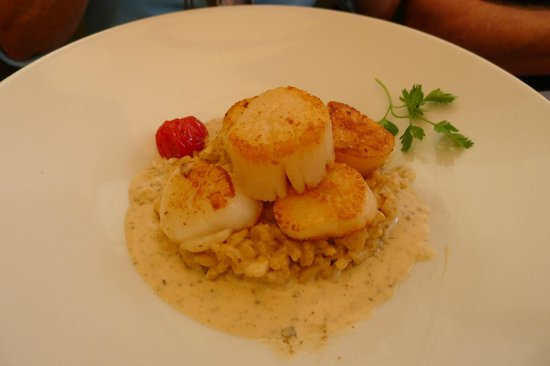 La Table de la Fontaine : Seared Scallops w/Risotto