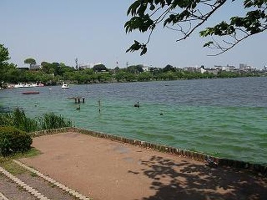 Semba Boadwalk: 千波公園